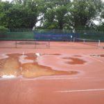 Tennis 08 2013